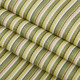 "Phifertex Plus Vinyl Mesh Delray Stripe Kiwi 54"" Fabric"